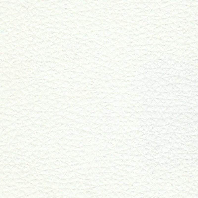 Ecopelle - Cat. A Art. 536/01